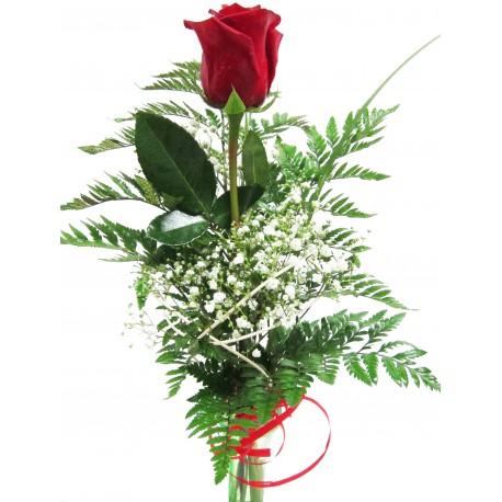 Rosa Roja Rosa Individual El Rincón De Las Flores